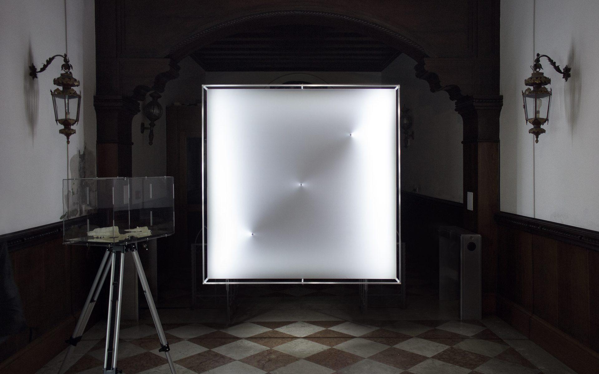 In-situ at Antarctic Pavilion (57th Venice Biennale), Venice / Italy (Hgdnt)